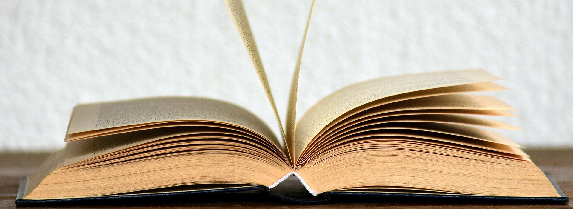 Imagem contém um livro aberto