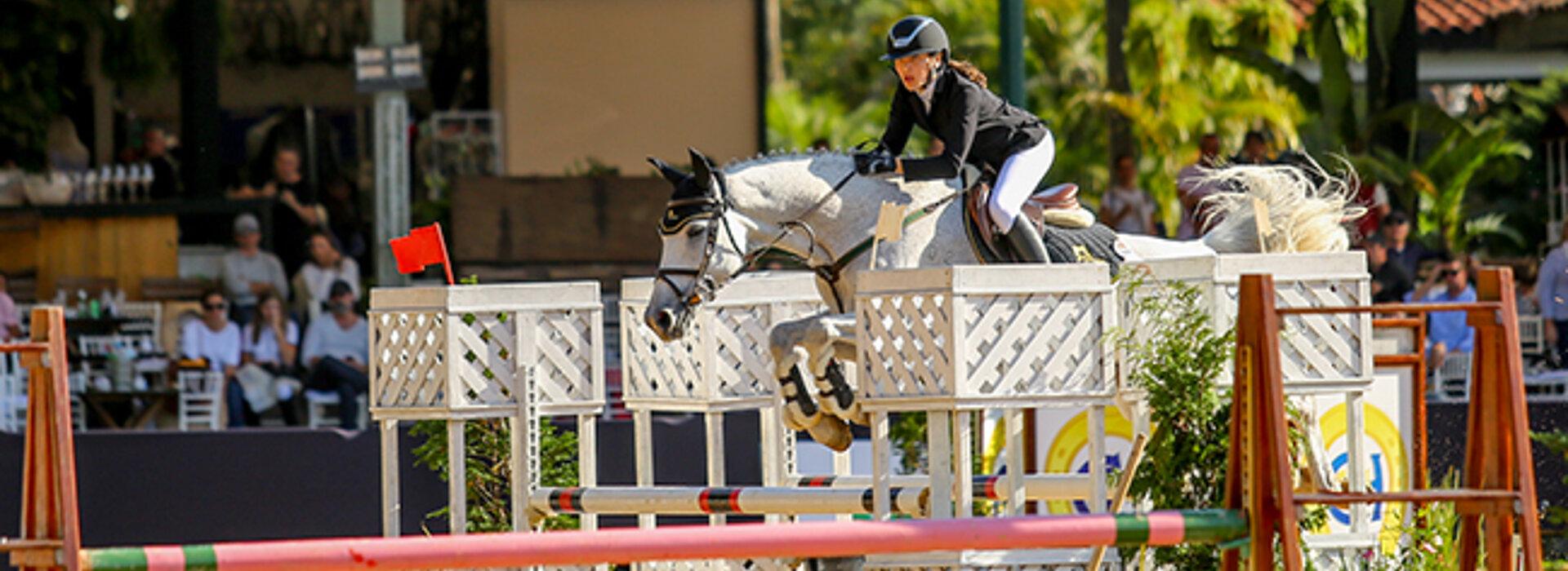 cavalo com amazona salta sobre obstáculos