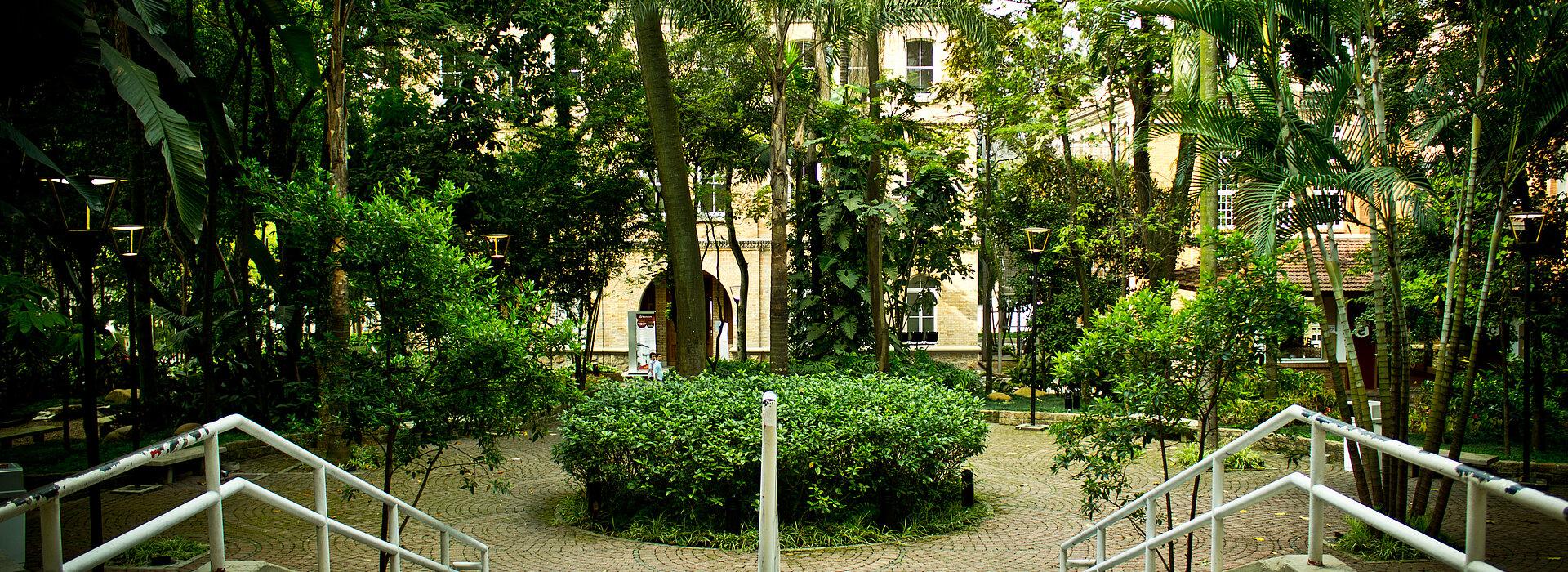 Imagem mostra o bosque do campus Higienópolis