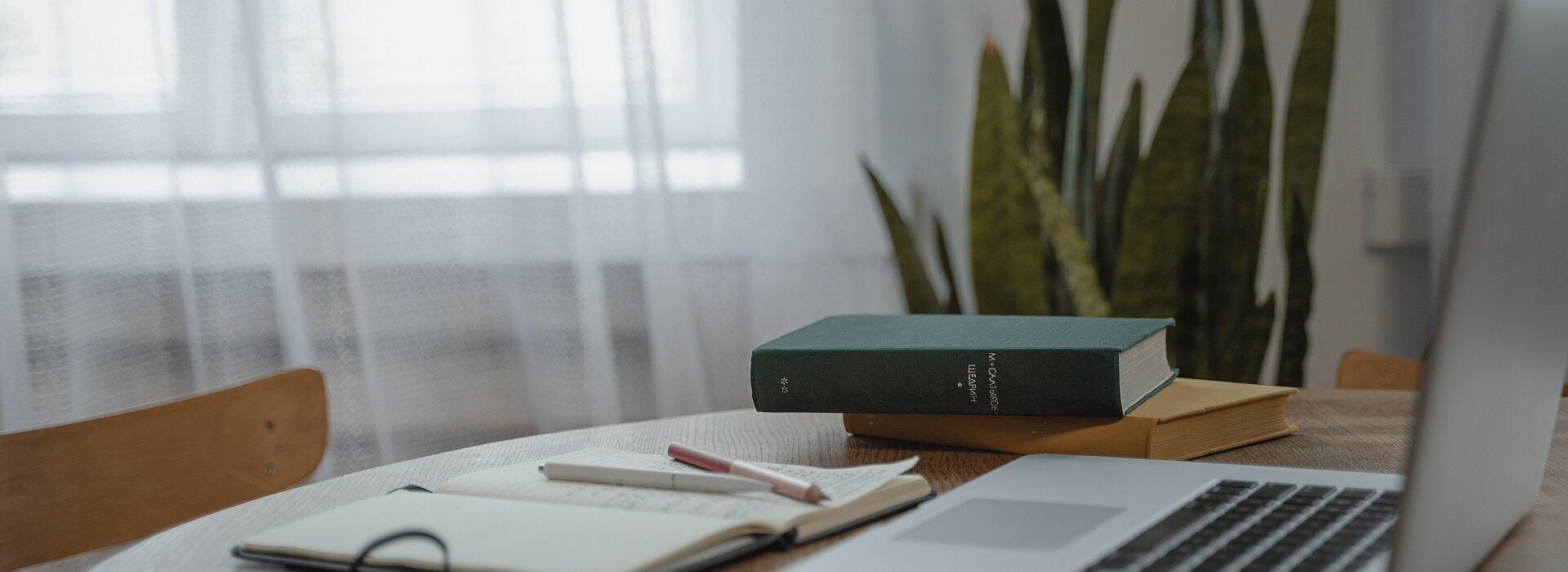 A imagem mostra uma planta ao fundo, uma mesa no primeiro plano, com um notebook, livros e um caderno com uma caneta. A foto é clara, pois tem uma janela no fundo.